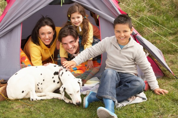 Camping Canines: Health Tips