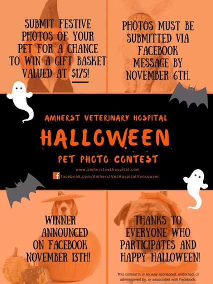 Hallowe'en Pet Photo Contest!
