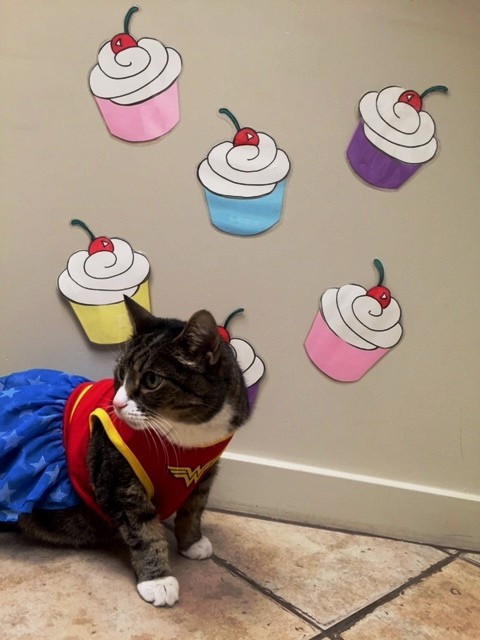 Cupcakes to the Rescue!